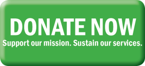 donate-now-button-300x136