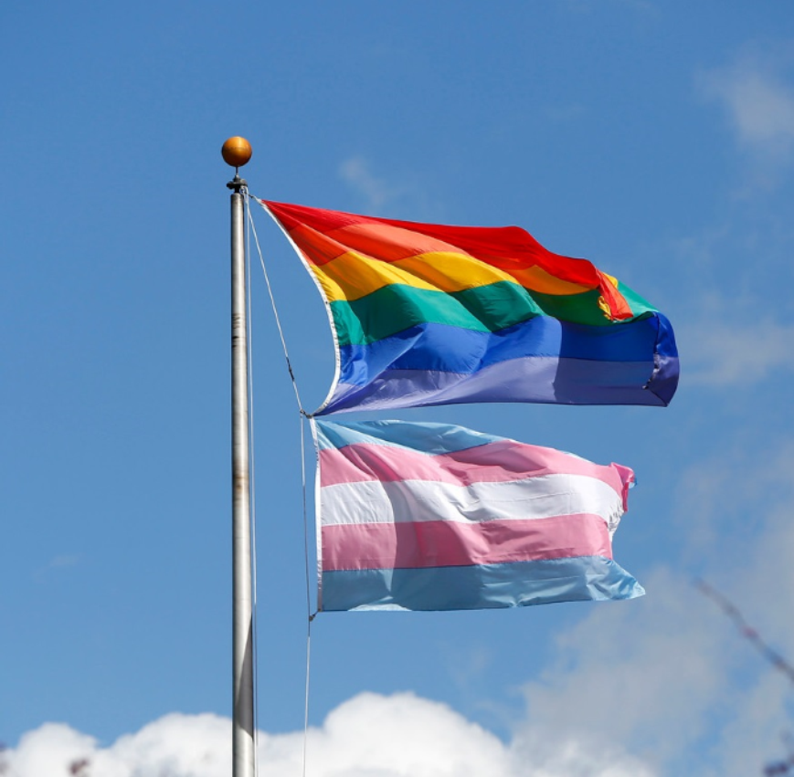 Rainbow striped flag and pink, blue, and white transgender flag on flag pole with blue sky in background.